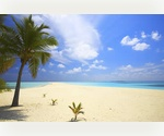Little Cayman Island Lots For Sale - 5 year 0% interest free finance plan -- Build your Dream House!! Live/Invest in Paradise - TAX FREE! Days away from price increase